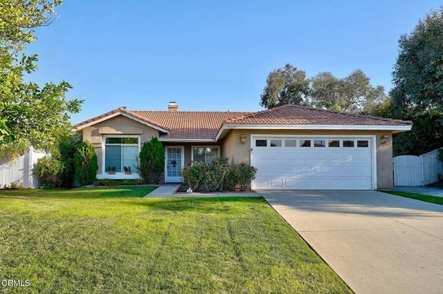 29256 Northpointe Street Street, Lake Elsinore, CA 92530 (#P1-4582) :: Berkshire Hathaway HomeServices California Properties
