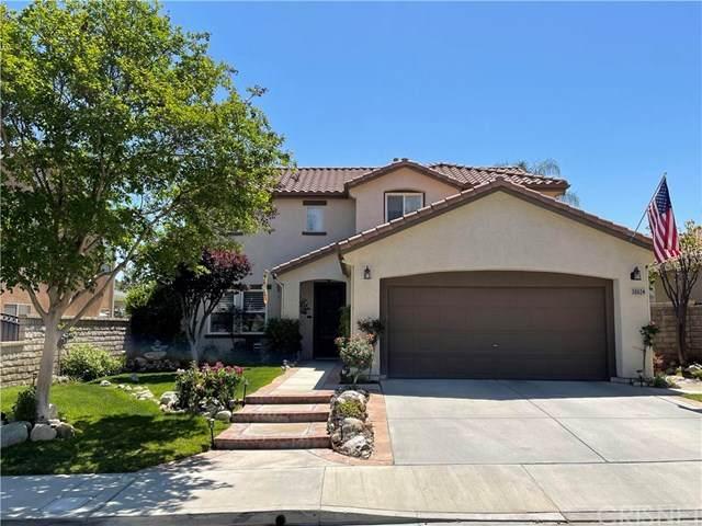 30024 Medford Place, Castaic, CA 91384 (#SR21095620) :: Montemayor & Associates