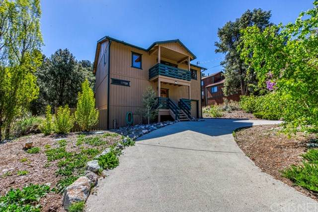 2520 Glacier Drive, Pine Mountain Club, CA 93225 (#SR21096524) :: Lydia Gable Realty Group