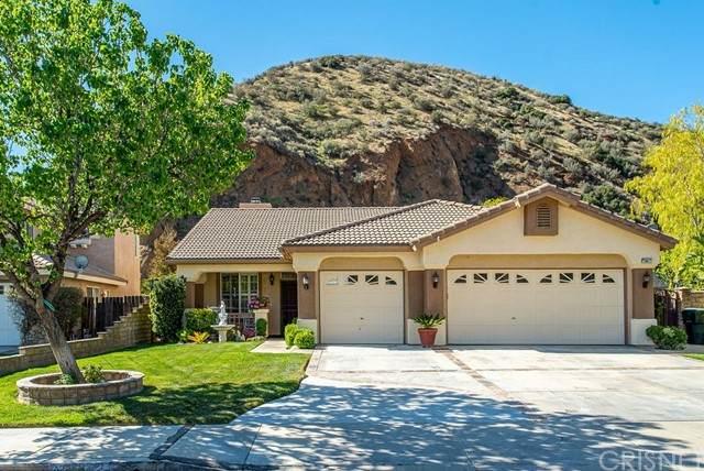 28672 Oak Valley Road, Castaic, CA 91384 (#SR21098056) :: Montemayor & Associates