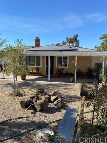 3203 E Avenue R14, Palmdale, CA 93550 (#SR21098166) :: Compass