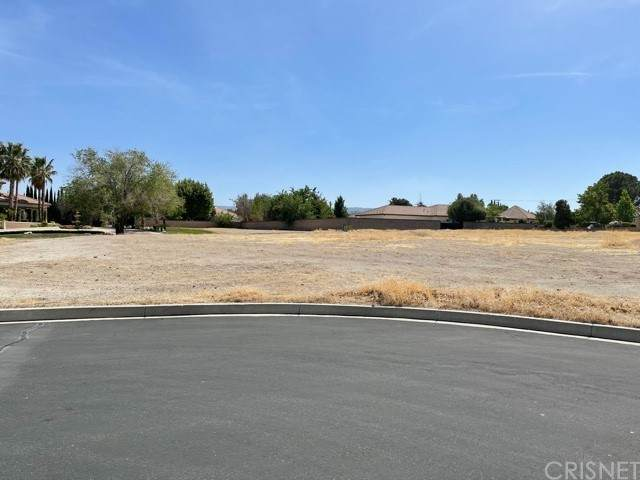 25 Westfield Estate Court, Lancaster, CA 93536 (#SR21098963) :: Montemayor & Associates