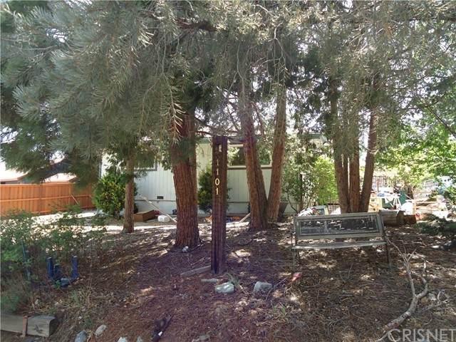 1101 Snowline Drive, Frazier Park, CA 93225 (#SR21099041) :: The Grillo Group