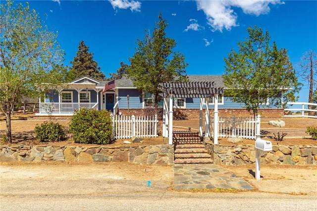 40231 92nd Street W, Leona Valley, CA 93551 (#SR21101264) :: Lydia Gable Realty Group