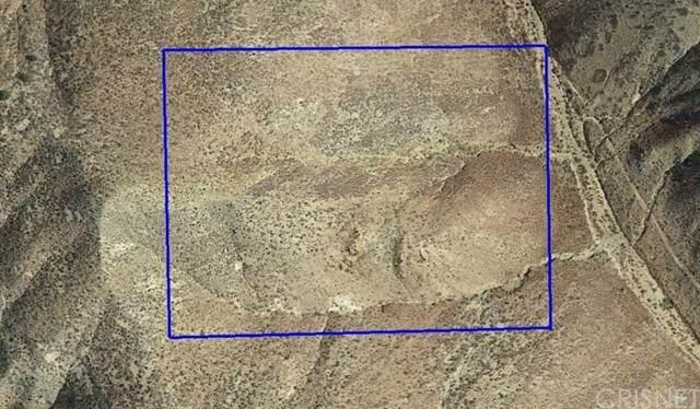 10 Pine Tree Canyon Road, Mojave, CA 93502 (#SR21110613) :: Angelo Fierro Group | Compass