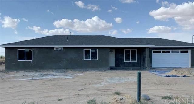 10021 E Avenue R4, Littlerock, CA 93543 (#SR21088295) :: Berkshire Hathaway HomeServices California Properties