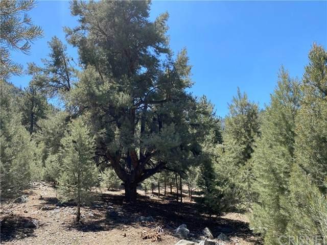 15120 Acacia Way, Pine Mountain Club, CA 93222 (#SR21116477) :: Montemayor & Associates