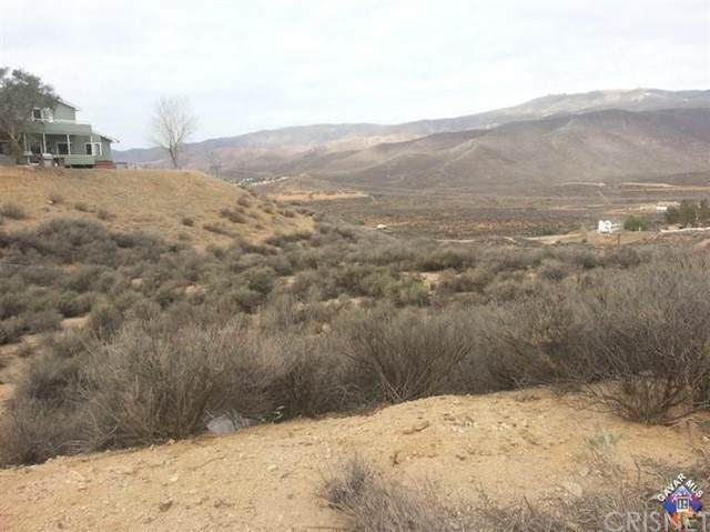 0 Vac/Vic Dale Rd/Sierra, Agua Dulce, CA 91350 (#SR21117027) :: Montemayor & Associates