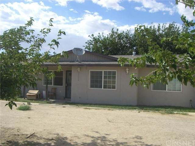 9707 E Avenue R, Littlerock, CA 93543 (#SR21118039) :: Lydia Gable Realty Group