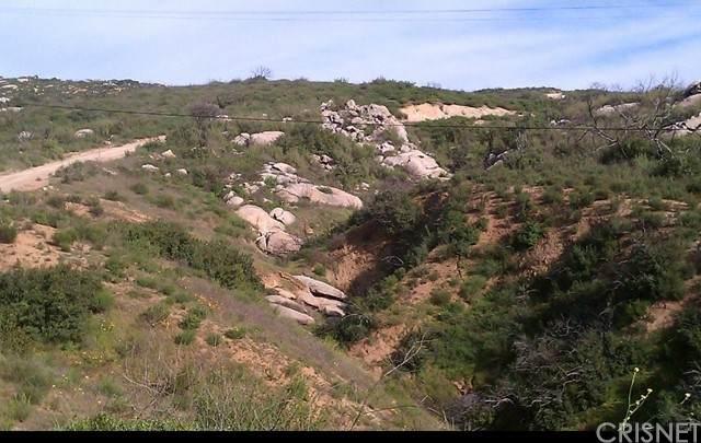 23835 Ladrido Lane, Ramona, CA 92065 (#SR21118842) :: The Bobnes Group Real Estate