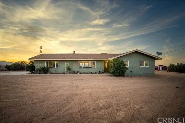 31240 106th Street E, Littlerock, CA 93543 (#SR21120271) :: Lydia Gable Realty Group