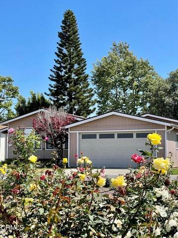 410 Dewberry Ln. #102, Oxnard, CA 93036 (#V1-6226) :: Randy Plaice and Associates