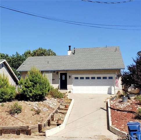 42732 Bluehills Drive, Lake Hughes, CA 93532 (#SR21127167) :: Lydia Gable Realty Group