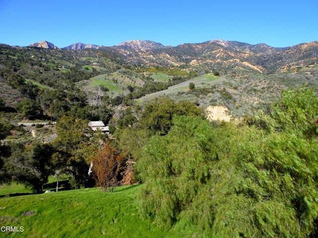 225 Conejo Road, Santa Barbara, CA 93103 (#V1-6393) :: Berkshire Hathaway HomeServices California Properties