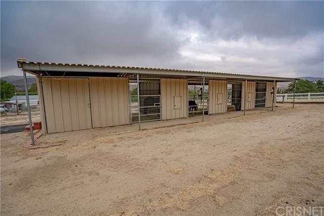 40016 90th Street W, Leona Valley, CA 93551 (#SR21127143) :: The Grillo Group