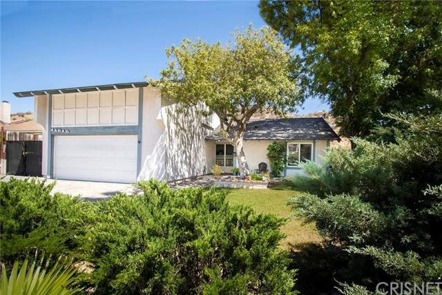 14816 Daisy Meadow Street, Canyon Country, CA 91387 (#SR21127580) :: Lydia Gable Realty Group