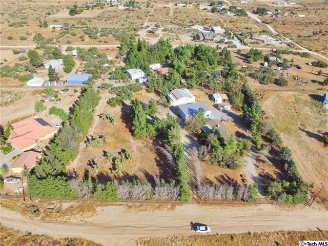 8979 Lager Road, Phelan, CA 92371 (#320006434) :: Montemayor & Associates