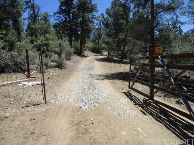 0 E. Green Trail, Frazier Park, CA 93225 (#SR21128318) :: Montemayor & Associates