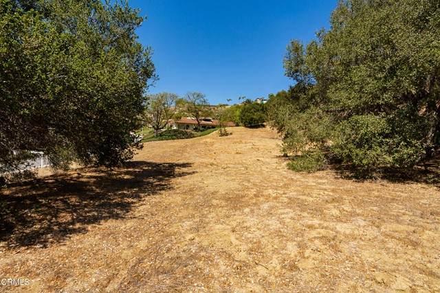 Bridgeview Drive, Ventura, CA 93003 (#V1-6495) :: The Suarez Team