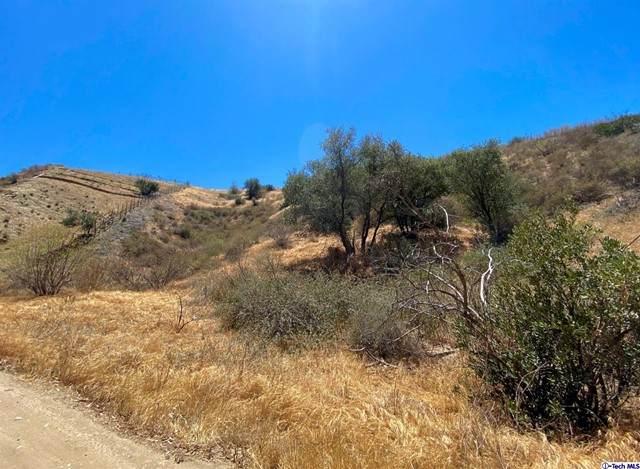 0 North Trail, Kagel Canyon, CA 91342 (#320006495) :: The Suarez Team