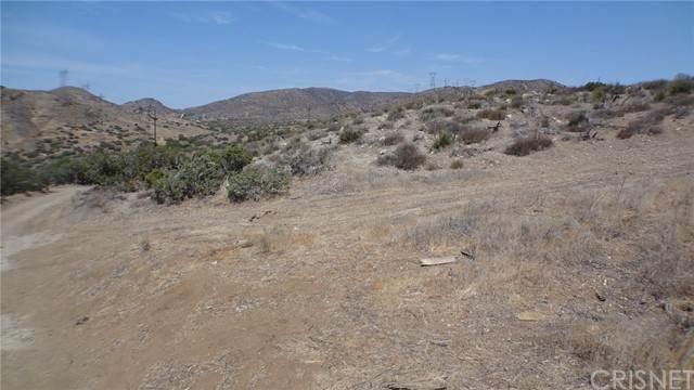 0 Vac/Vic Eagle Butte Rd/Tuckerw, Acton, CA 93510 (#SR21131765) :: Montemayor & Associates