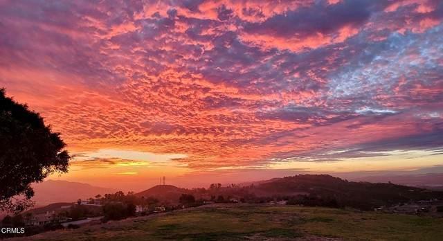 11365 Presilla Road, Santa Rosa, CA 93012 (#V1-6513) :: The Grillo Group