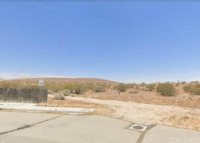 1 United Street, Rosamond, CA 93560 (#SR21132296) :: TruLine Realty