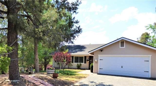 1201 Lion Lane, Frazier Park, CA 93225 (#SR21131372) :: The Grillo Group