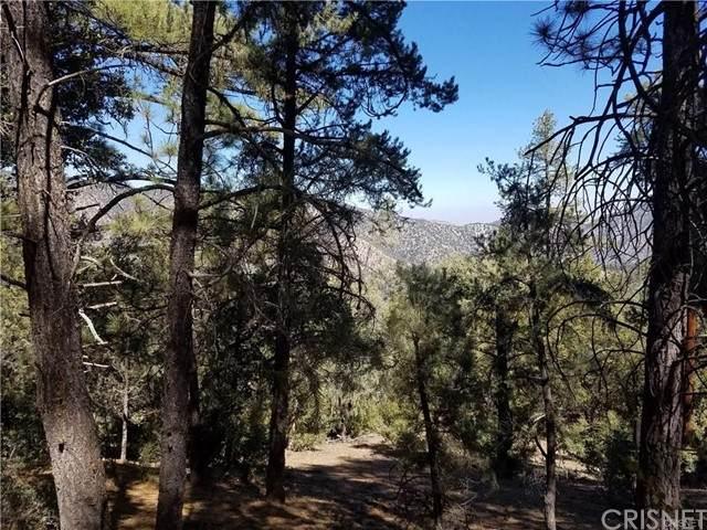 1513 Zermatt Drive, Pine Mountain Club, CA 93222 (#SR21133488) :: The Grillo Group