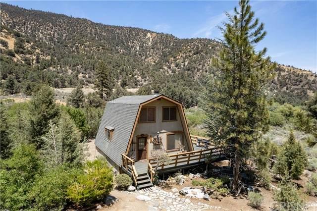 15713 Wildwood Drive, Pine Mountain Club, CA 93222 (#SR21131791) :: The Grillo Group