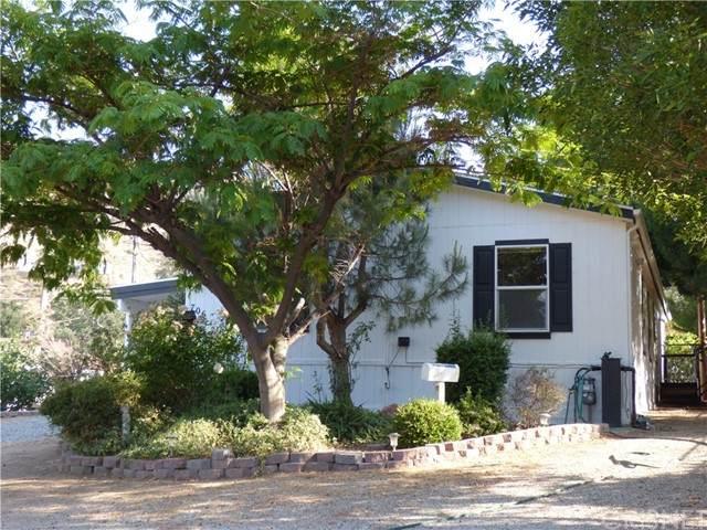 706 Canyon Drive, Lebec, CA 93243 (#SR21132133) :: Lydia Gable Realty Group