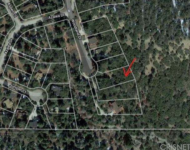 1204 Woodland Drive, Pine Mountain Club, CA 93222 (#SR21135310) :: The Grillo Group