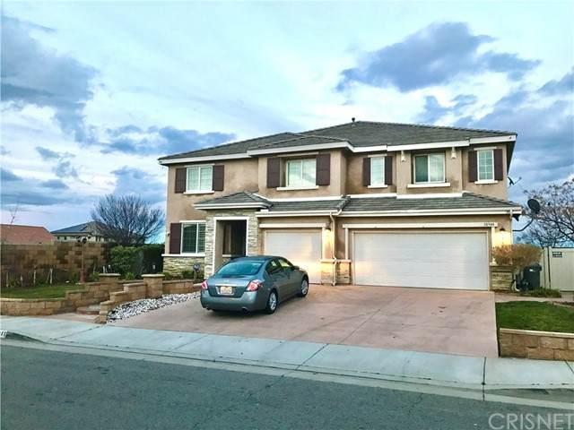 38944 Malva Rosa Drive, Palmdale, CA 93551 (#SR21134371) :: Randy Plaice and Associates