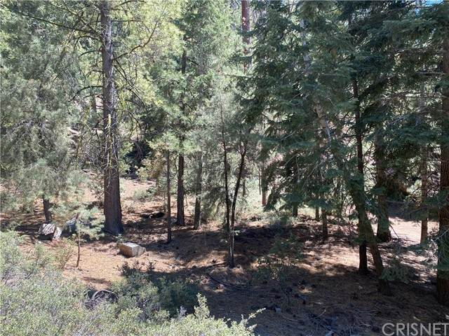 1300 Linden Drive, Pine Mountain Club, CA 93225 (#SR21136749) :: The Grillo Group