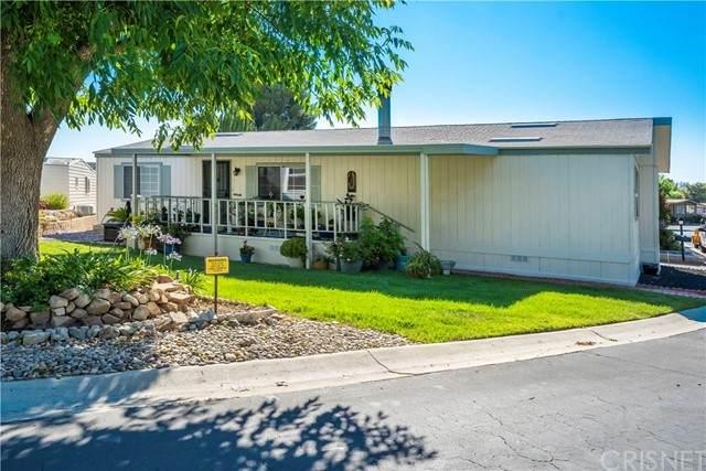 26503 Golden Bush Way, Canyon Country, CA 91351 (#SR21135442) :: Randy Plaice and Associates