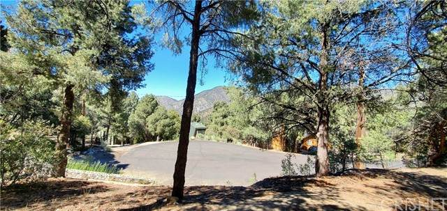 2212 Tirol Drive, Pine Mountain Club, CA 93225 (#SR21137118) :: The Grillo Group