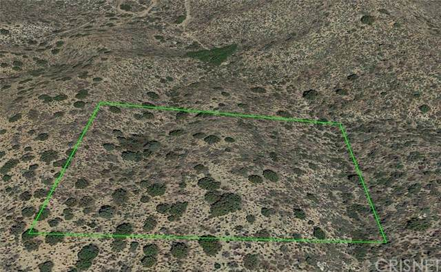 1 Vic Panorama & 190th E, Llano, CA 93544 (#SR21137289) :: The Grillo Group