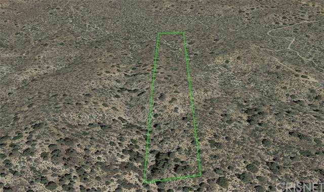 19300 Vac/Vic 193 Ste/Panorama Road, Llano, CA 93544 (#SR21137343) :: The Grillo Group
