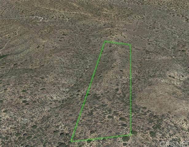 19000 Vac Panorama & 190 E, Llano, CA 93544 (#SR21137391) :: The Grillo Group
