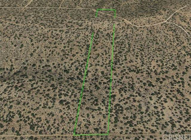 19000 Holcomb Ridge & 190 E Road, Llano, CA 93544 (#SR21137445) :: The Grillo Group