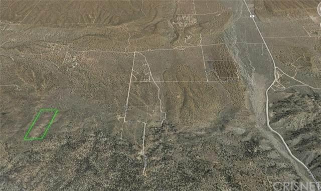 19200 Vac/Vic 192 Ste/Panorama Road, Llano, CA 93544 (#SR21137498) :: The Grillo Group