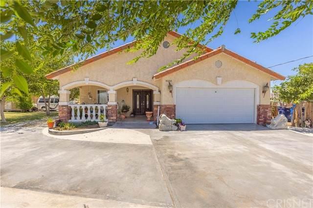 8550 E Avenue U, Littlerock, CA 93543 (#SR21149614) :: Lydia Gable Realty Group