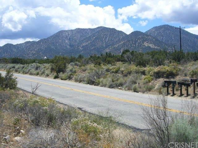 0 Vac/Devil S Punchbowl Rd/Vic 1, Juniper Hills, CA 93543 (#SR21151114) :: Lydia Gable Realty Group