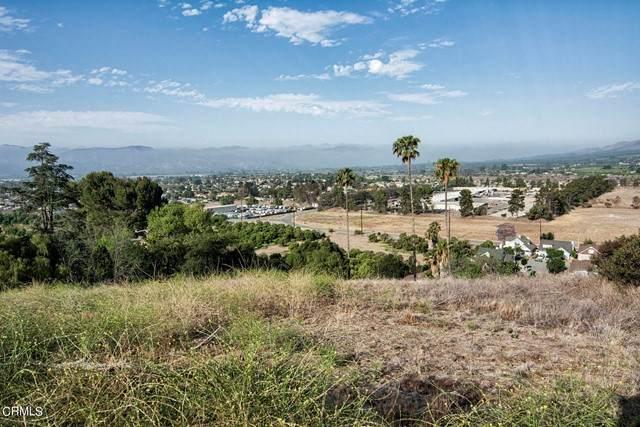 2 Hunter Drive, Fillmore, CA 93015 (#V1-7091) :: Lydia Gable Realty Group