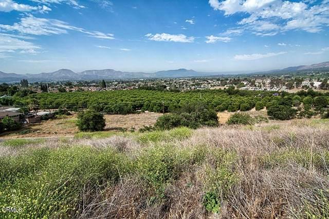 1 Hunter Drive, Fillmore, CA 93015 (#V1-7092) :: Lydia Gable Realty Group