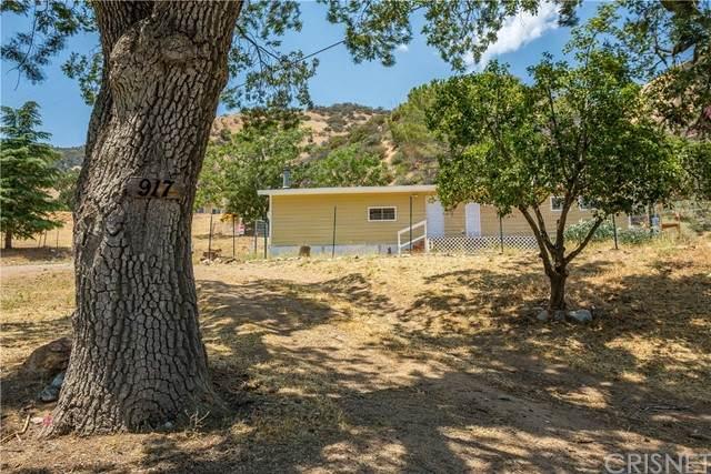 917 Canyon Drive, Lebec, CA 93243 (#SR21153746) :: Lydia Gable Realty Group