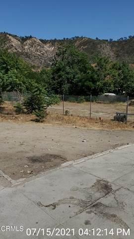 8618 N Ventura Avenue, Ventura, CA 93001 (#V1-7155) :: The Suarez Team
