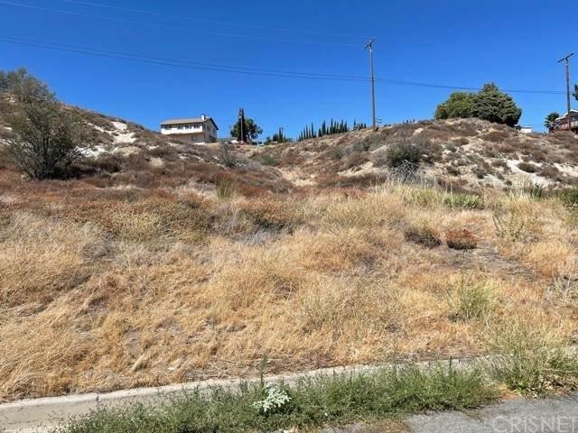 1 Kiptree Dr/Vic Ranch Club Rd Drive, Lake Elizabeth, CA 93532 (#SR21161036) :: Montemayor & Associates
