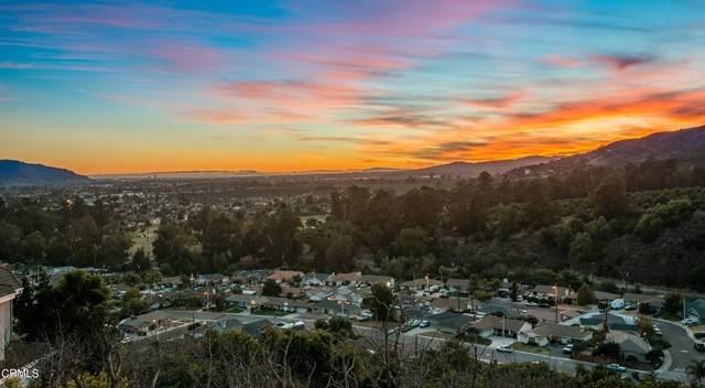 566 Glade Drive, Santa Paula, CA 93060 (#V1-7351) :: Lydia Gable Realty Group