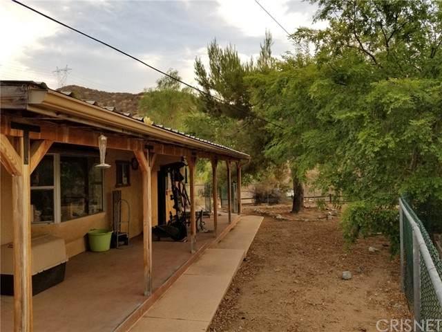 11964 Sierra Highway, Agua Dulce, CA 91390 (#SR21162937) :: Randy Plaice and Associates